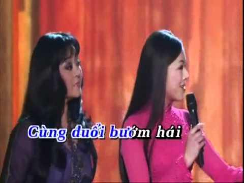 Karaoke Nỗi buồn hoa phượng Lưu bút ngày xanh