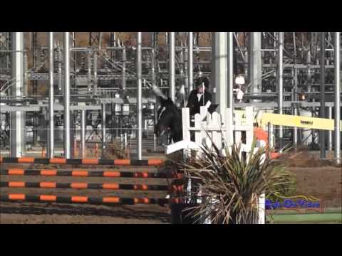 034S Holly Fox Open Training Show Jumping Fresno County Horse Park Nov. 2013
