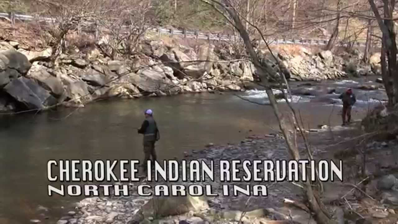 Cherokee north carolina trout fishing youtube for Nc trout fishing regulations