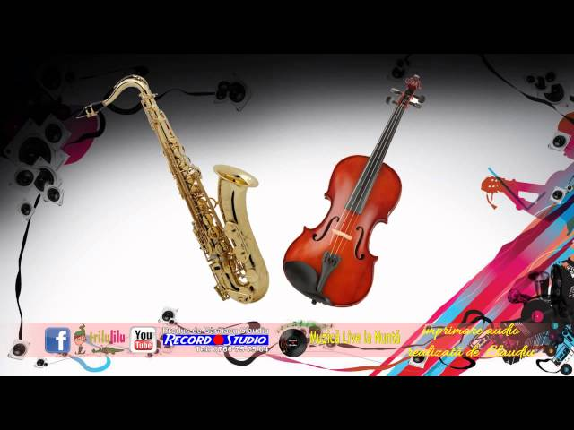 Vasi de la Sadu si Marcel - Vioara si Saxofon - Program SARBA  Instrumental LIVE