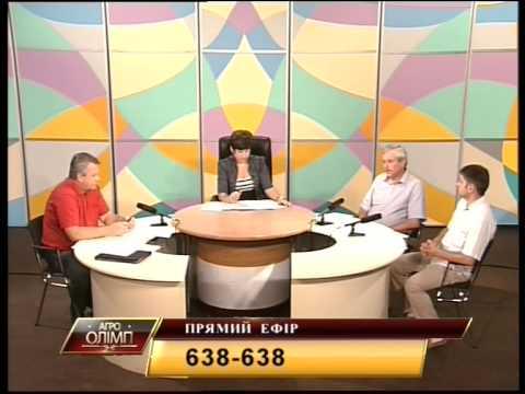Рынок свинины в Украине: реалии и перспективы