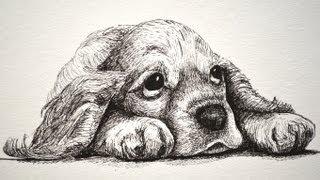 Como dibujar un cachorrito triste