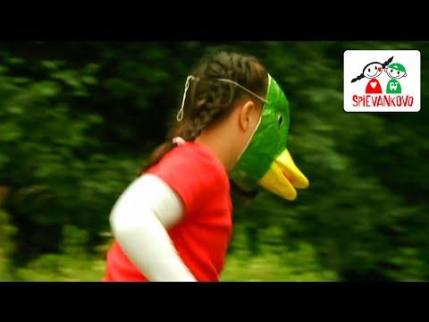 Spievankovo - Pláva kačka