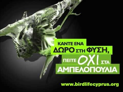 Cyprus bird trapping - BirdLife Cyprus' radio spot on the tradition of bird trapping