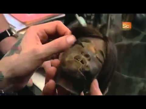 Oddities  Shrunken Human Head