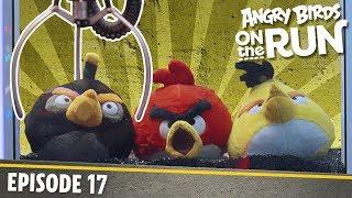 Angry Birds - Na úteku - Automat