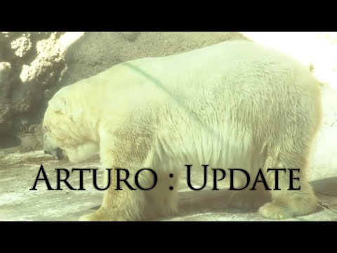 Arturo Update: The Mendoza Zoo