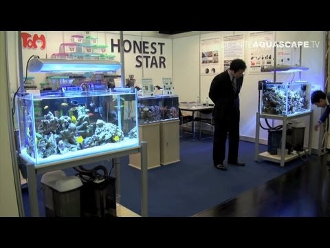 Aquarium Ideas from InterZoo 2012 - Honest Star (pt. 10)