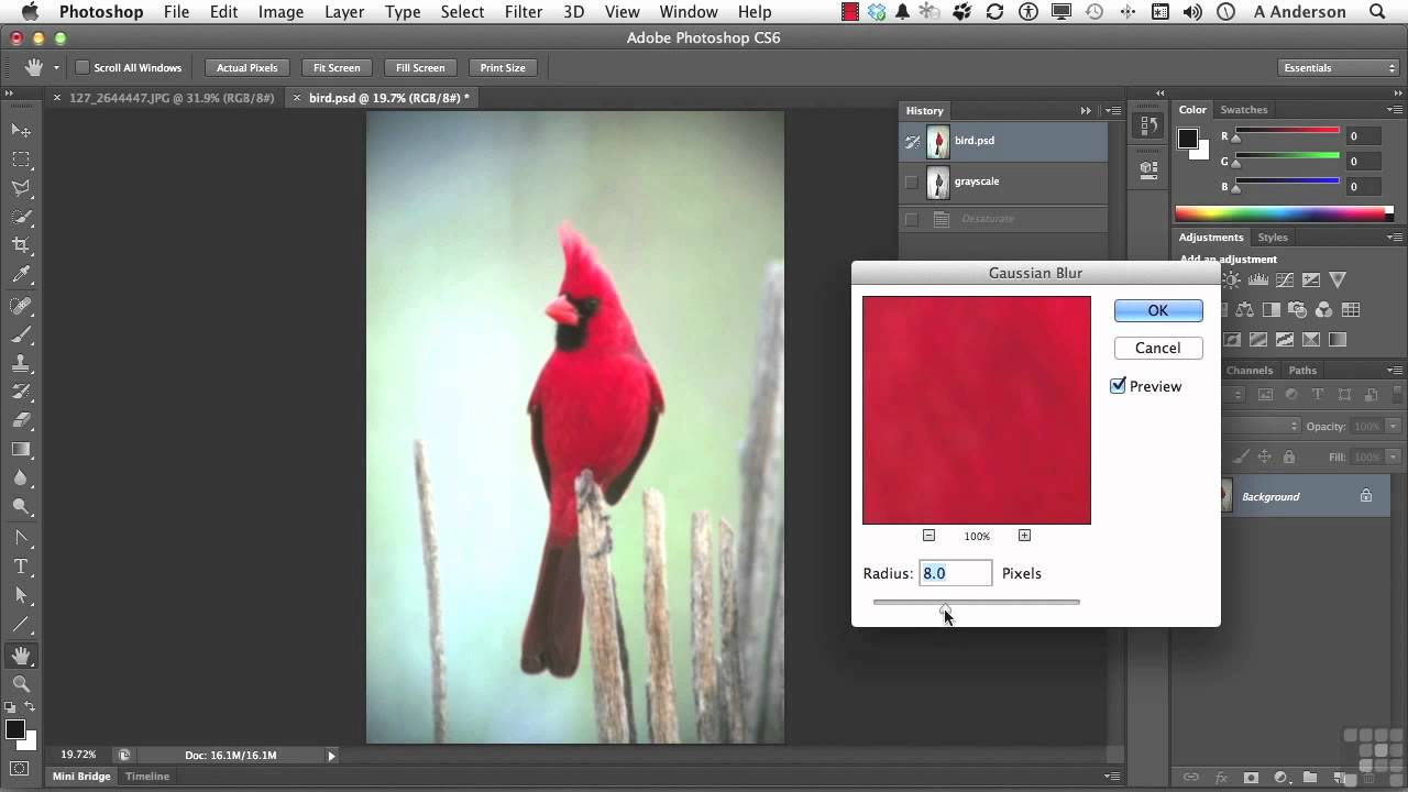 Photoshop CC/CS6: How To Install Brushes (Download ...