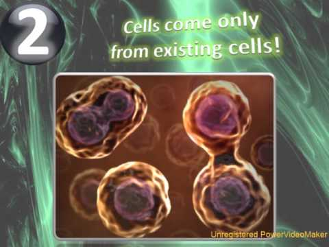 The Cell Theory Animation - Explaining the Laws of all Living Orginisms