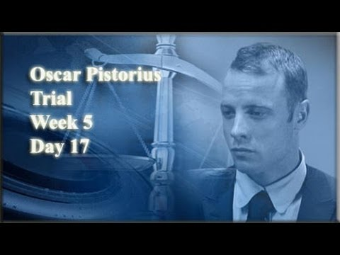 Oscar Pistorius Trial: Monday 7 April 2014, Session 2