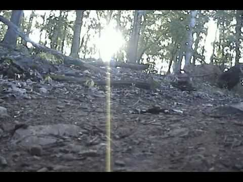 Xesy - Thursday, September 20th (Official Video)