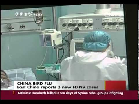 East China reports 3 new H7N9 cases