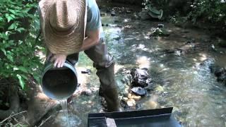 Weekend Prospectors: Creek 5 Gold Panning