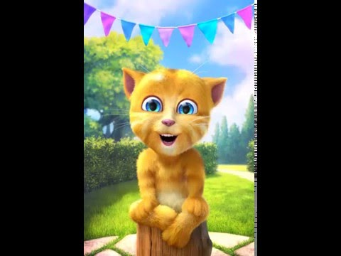 Ginger Cat Signs Happy Birthday To You Baby Songs