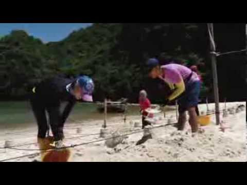 TARV - Cuộc Đua Kỳ Thú 2013 - Tập 10 - Gian nan đãi cát tìm mật thư