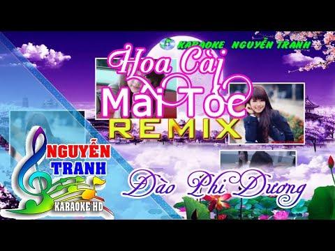 [karaoke] Hoa Cài Mái Tóc Remix (beat Đào Phi Dương)