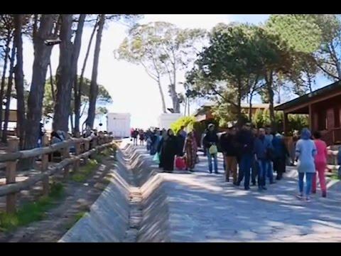 ساكنة طنجة يختارون غابة الرميلات لقضاء عطلة نهاية الأسبوع