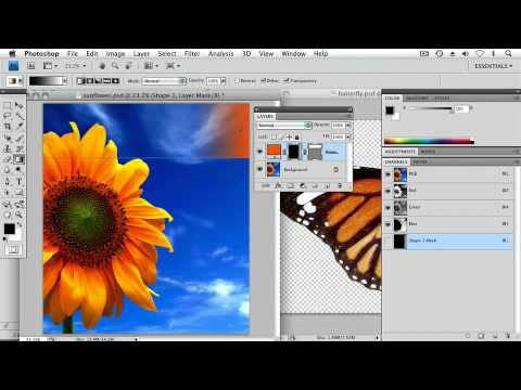 Adobe Photoshop CS4 Extended Advanced Ch9 CREATING VECTOR ARTWORK Working with Custom Vector Shapes