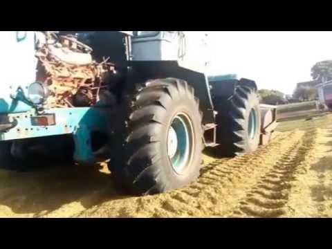 Kukurydza 2014: Kirowiec w akcji