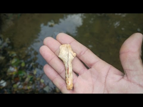 Arrowhead Hunting Mississippi: Late Archaic Drill