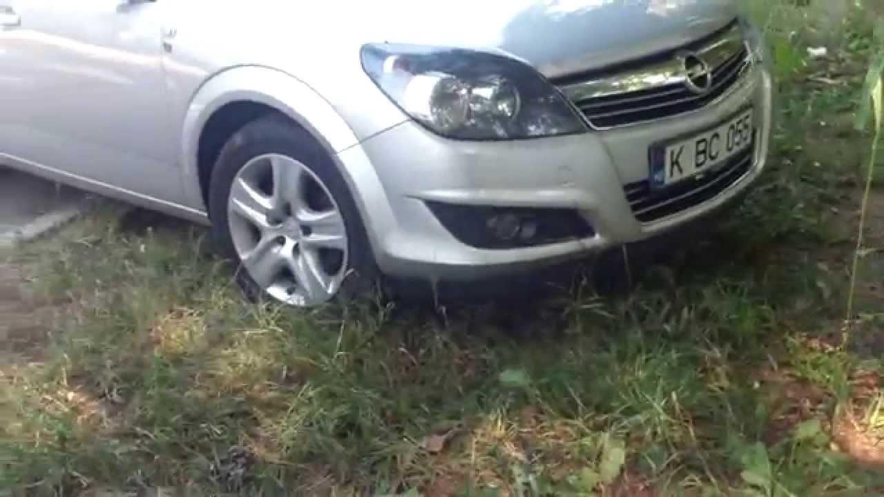 A parcat pe gazon și a lăsat cîinele încuiat