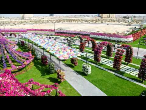 Dubai Miracle Garden, Great Place In Dubai
