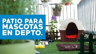 Cómo hacer un patio para mascotas en apartamentos