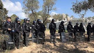 مظاهرات في إيطاليا ضد اقتلاع أشجار الزيتون لمد أنابيب الغاز  