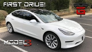 Model 3 First Drive