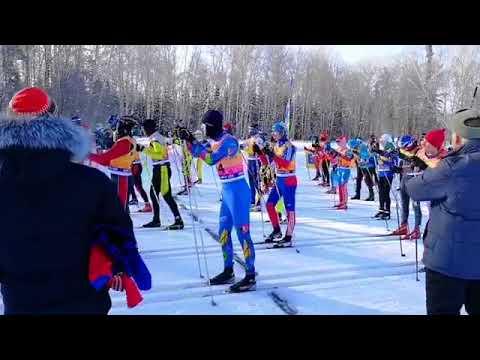 Почти две сотни лыжников собрались в Академгородке ради массовой гонки