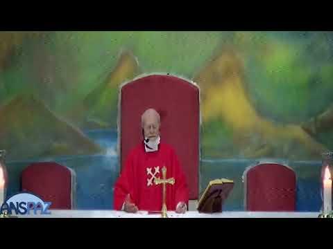 Santa Missa | 28.11.2020 - noite | Sábado | Padre José Sometti | ANSPAZ