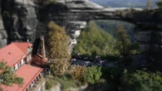 Small Life in Saxon Switzerland