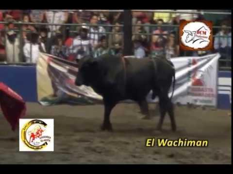 Campeonato Centroamericano de Montas de Toros marzo 2014