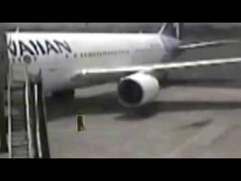Sighthound Video Clip - Hawaiian Airlines Stowaway Clip