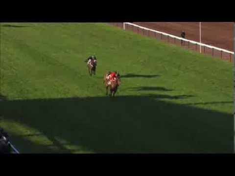 Vidéo de la course PMU PRIX DANIEL ROSSIO