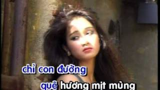 Dua Em Vao Ha Che Linh Karaoke U Sing