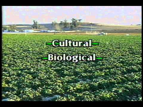 IPM in Agriculture