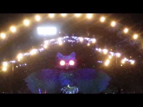STEVE ANGELLO -CHILDREN OF THE WILD @ELECTRIC DAISY CARNIVAL MEXICO