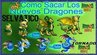 Como Sacar A Los 2 Nuevos Dragones (selvatico Y Tornado