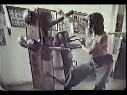 Buk Sing Fremont (北勝蔡李佛) #11