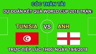 Cóc THẦN TÀI Dự Đoán kết quả trận TUNISIA vs ANH | Trực tiếp lúc 1h00 19/6 trên VTV3