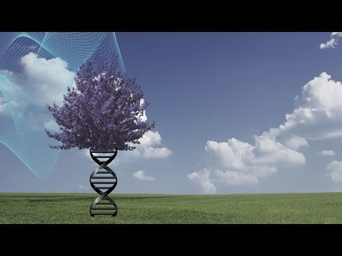"""Destiny and DNA: Our Pliable Genome"" Trailer"
