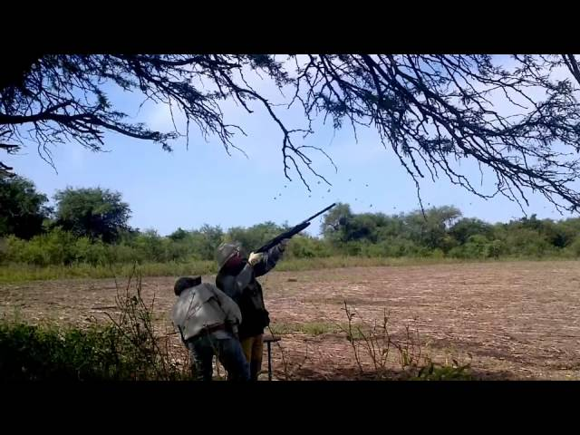 Argentina Dove Hunting - April 2012