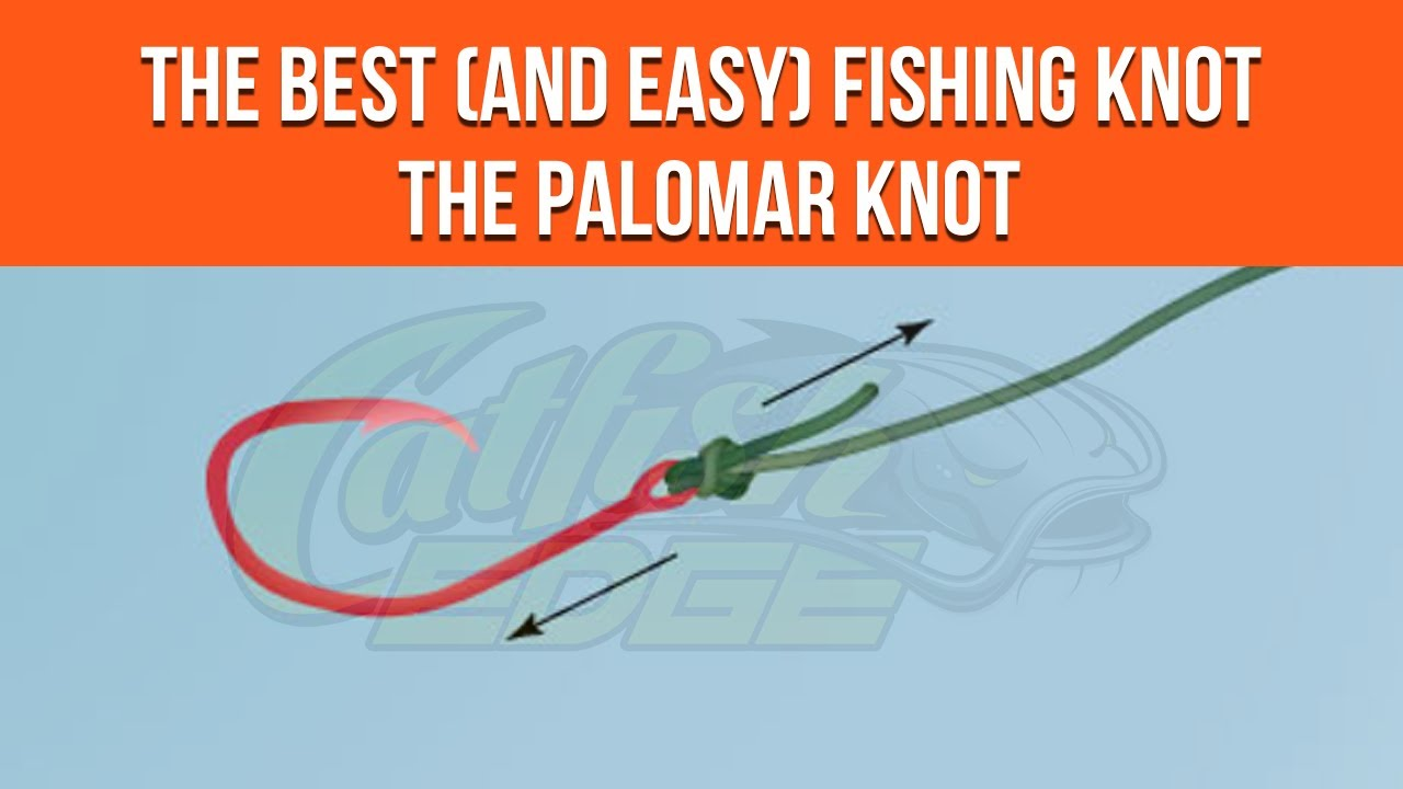Palomar knot for fishing simple knot for catfishing for Fishing knots easy