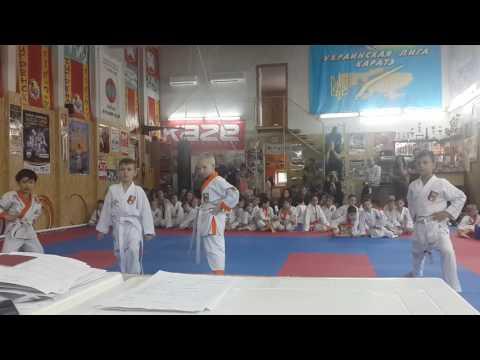 Аттестационный экзамен 29.05.2016 г. по каратэ в клубе Тигренок ч 3