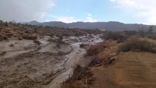 Akibat hujan lebat di padang gurun, ini hasilnya