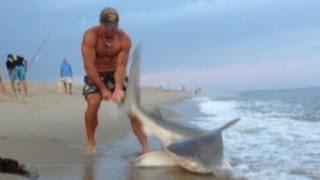 Hombre lucha con tiburón con sus manos