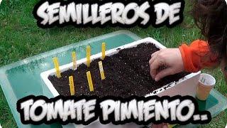 Hacer semillero de Tomate, Pimiento y Berenjenas