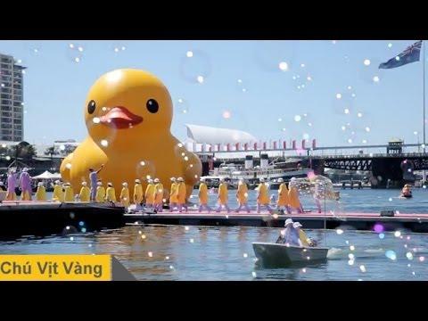 Lễ Hội Sydney 2013 Chú Vịt Vàng